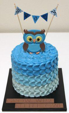 Blue Ombre Owl Smash Cake! Peace.Love.Sugar https://www.facebook.com/pages/PeaceLoveSugar/107504169339809