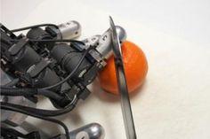 豊橋技術科学大学と京都大学の共同研究チームは、人間が「痛そうな状況にあるロボット」に感情移入することを脳波で確認した。