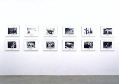 """Polar Bear (Ursus Maritimus) III"", Mark Dion (1994) | Art and Biology"