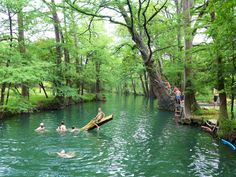 It's not hard to see why animals of all kinds enjoy Blue Hole Regional Park.