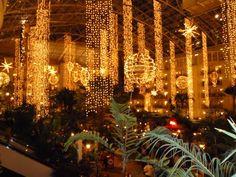 Opryland Hotel Nashville, TN