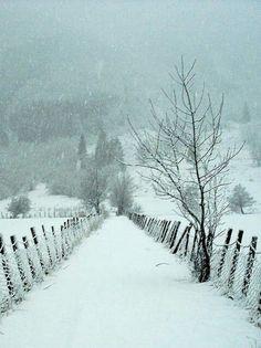 snow fencing