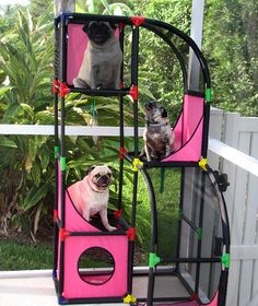 Pug Condos! #Pet Products