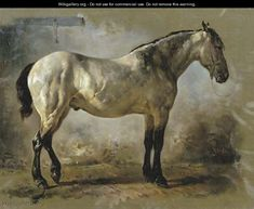 Yanko in the stable a white horse - Wouterus Verschuur