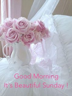 Good Morning Friends, it's dry, not windy ~ great day !