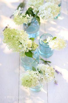 White Hydrangeas..Color water in Ball jars...