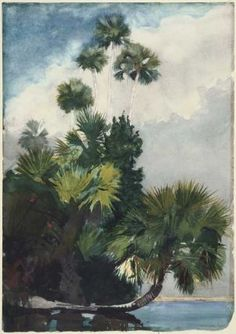 "Winslow Homer ""Palm Trees, Florida."" Museum of Fine Arts, Boston."
