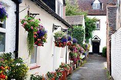 Hanging Baskets in an Alleyway Bridgnorth Shropshire England Alleyway, Snowdonia, Great Shots, British Isles, Dream Garden, Britain, Beautiful Places, Places To Visit, Hanging Baskets