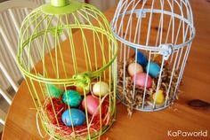αυγά σε κλουβί!!!