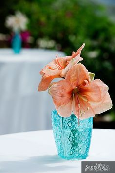 Simple Portfolio - Coral and turquoise wedding,coral flower centerpieces