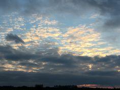 Nov12_Cu hum (Mitte) & Cc flo (die 'hellen' Wolken in der Mitte) & As un (oben im Bild)