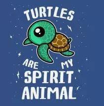Red Ear Turtle, Sea Turtle Art, Turtle Love, Cute Turtles, Baby Turtles, Turtle Spirit Animal, Turtle Quotes, Sea Turtle Wallpaper, Monkey Art