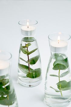 These floating greenery votives seem so fancy yet they're very simple. Just about anything from your yard would work great. Great for a simple decoration! diy decoration for home How to make floating greenery votives Wedding Centerpieces, Wedding Table, Diy Wedding, Wedding Decorations, Centerpiece Ideas, Centerpiece Flowers, Wedding Ideas, Table Centerpieces, Geek Wedding