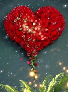 Flower Background Wallpaper, Flower Phone Wallpaper, Heart Wallpaper, Butterfly Wallpaper, Love Heart Images, Love You Images, Cute Love Pictures, Beautiful Fantasy Art, Beautiful Gif