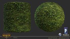 jared-sobotta-grass.jpg (1920×1080)