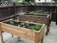 trough herb garden
