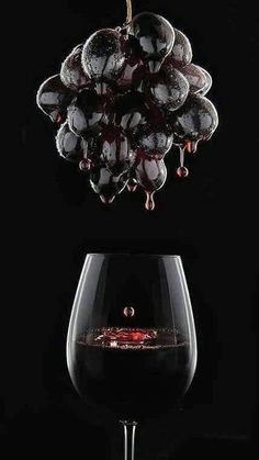 Wine Tattoo Realistic - Wine Ideas Decoration - Wine Room With Fireplace - Japanese Wine Packaging - - Red Wine Stain Removal Glass Photography, Fruit Photography, Wine Images, Pouring Wine, Barolo Wine, Spanish Wine, Wine Art, Wine Fridge, In Vino Veritas