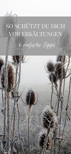Im Herbst und Winter ist Erkältungszeit. Mit diesen Tipps kann man eine Erkältung vermeiden und gesund durch den Herbst und Winter kommen. Das Gute: Für die Erkältung Tipps muss fast gar nicht tun.