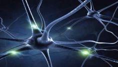 Apprenez à votre cerveau à se débarrasser de ses anciennes habitudes