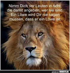 Nimm Dich vor Leuten in Acht. Beware of people . 9gag Funny, Funny Jokes, Blonde Jokes, Funny Sports Pictures, Motivational Quotes For Women, College Humor, Sports Humor, Aunty Acid, Carl Grimes