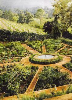 Beautiful Vegetable Garden 6