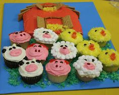 For farm themed party