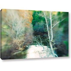 ArtWall Elena Ray Calm River Gallery-wrapped Canvas, Size: 24 x 36, White