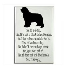 If you have a newfie, you have answered these questions lots of times!