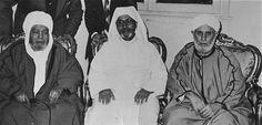 Shaykh Muhammad al Hafiz (left) Shaykh Idris al Iraqi (center) and Shaykh Abdul Majid (right). #Islam #Sufism #Esoterism #Mysticism #Spirituality #God #Religion  #Allah #saint #wali #Tijani