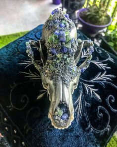 Crystallized grey fox skull embellished with Peridot and Tanzanite. This item is made to order, please allow weeks for production. Deer Skull Art, Coyote Skull, Fox Skull, Deer Skulls, Longhorn Skulls, Skull Decor Diy, Skull Crafts, Painted Animal Skulls, Bone Crafts