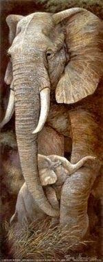 Protective Care Print by Ruane Manning at AllPosters. com Protective Care Print by Ruane Manning at AllPosters. com Protective Care Pr. Beautiful Creatures, Animals Beautiful, Baby Animals, Cute Animals, Wild Animals, Fluffy Animals, Elephas Maximus, Baby Elefant, Elephant Love