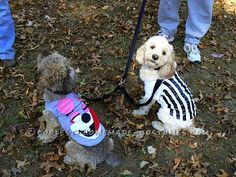 Funny Pet Dog Costumes: No Twerking Please…... This website is the Pinterest of costumes