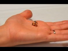 Origami robot from MIT self-folds, digs, and then dissolves
