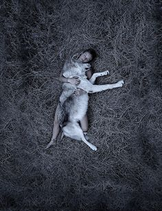 I had a dream last night that involved a giant wolf. This image made me think of it :)