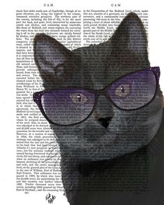 Black Cat Print Cool Cat Sunglasses Cat Painting Art by FabFunky, $15.00