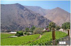Cile Valle del Elqui