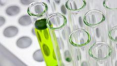 Homeopathy :: बाख फ्लावर रेमेडीज Biology Test, Mike Patton, Dollar, Lyme Disease, Middle School Science, Biotechnology, Life Science, Science Chemistry, Science Fiction