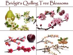 Bridgit's Quilling Pear, Cherry, Plum- and  Almond Blossoms (Part 2)