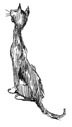 Vintage Cat Clip Art Illustration