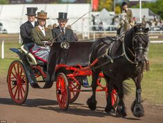 Tradition: Lady Louise Windsor, 13, drove a carriage at the Royal Windsor Horse Show today...