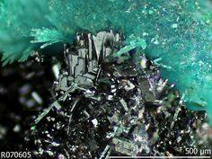 Plattnerite, PbO2, Ojuela mine, Mapimi, Durango, Mexico. Black tarnished metallic prismatic crystals