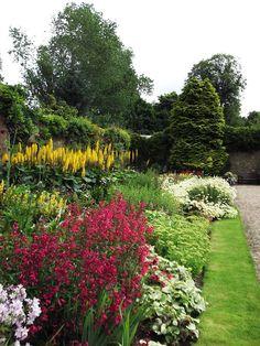 Pretty garden border