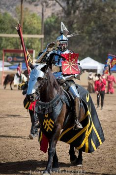 Toby Capwell waves to the crowd, Tournament of the Phoenix 2014 (photo by J. Camacho Photography) The Jousting Life