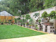 bonsai garden   Bonsai Garden