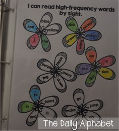 The Daily Alphabet: Data Notebooks in Kindergarten Kindergarten Data Notebooks, Kindergarten Reading, Leadership Notebook, Preschool Portfolio, Data Folders, Primary Activities, Education And Literacy, Classroom Organization, Classroom Management