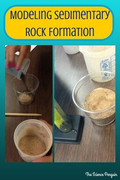 The Science Penguin: Sedimentary Rock and Fossil Fuels {After School Science Tutoring} This looks simple and effective teaching project. Hands on activity is a great teaching tool. The downside to something like this would be the messy factor. Science Tutor, Rock Science, Third Grade Science, Elementary Science, Middle School Science, Science Classroom, Teaching Science, Science Education, Science For Kids