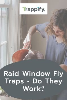 The best way to defeat flies is by disposing of them properly. Here are some pros and cons of using Raid Window Fly Traps. Indoor Vegetable Gardening, Organic Gardening Tips, Hanging Plants, Indoor Plants, How To Get Rid Of Gnats, Get Rid Of Flies, Fruit Flies, Fly Traps, Dogs And Kids
