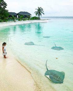 Jumeirah Vittaveli #Maldives