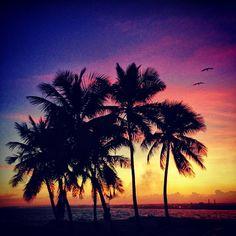 *ْ◦  Atardecer de hoy con @Barb Aik Santo Domingo Dominican Republic  ◦   #gang_family    #gf_daily    #skystyles_gf    #gf_dominicana  ◦  Gang Family - something for everyone!!  ◦  www.gang-family.com  ◦ - @dpou_gf- #webstagram