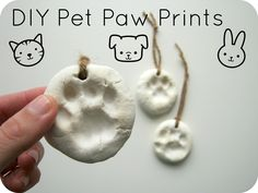 DIY Pet Paw Prints - My vet does something like this as a remembrance when our loved ones pass on.   What a cool thing to do if you get them from puppy to older... (I also keep their dog tags / cat tags)